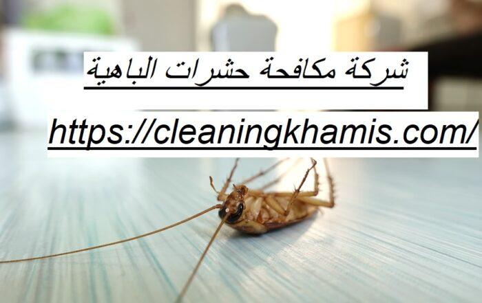 شركة مكافحة حشرات الباهية