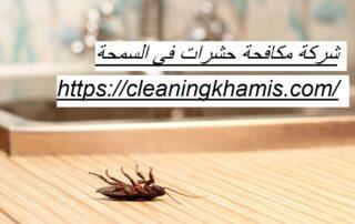 شركة مكافحة حشرات في السمحة