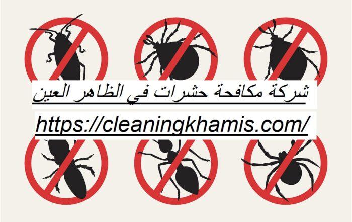 شركة مكافحة حشرات في الظاهر العين
