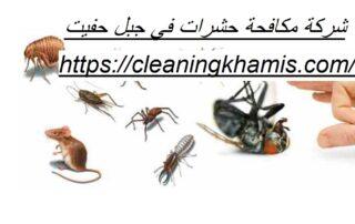 شركة مكافحة حشرات في جبل حفيت