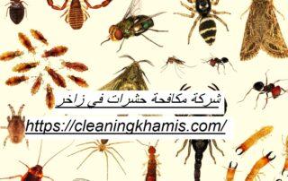شركة مكافحة حشرات في زاخر